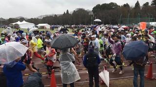 マラソン 2.jpg